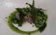 Dinner @ Botanic Gardens Restaurant (Adelaide, Australia)